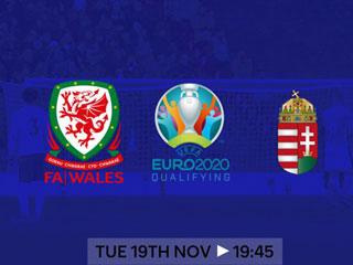 【南华陈七】威尔士VS匈牙利